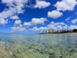 ホテルの前に広がるエメラルドグリーンの海☆海ガメも訪れる自然の美しいビーチでは星の砂にも出会えます