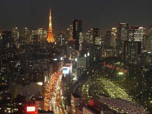 東京タワー側の夜景(一例)