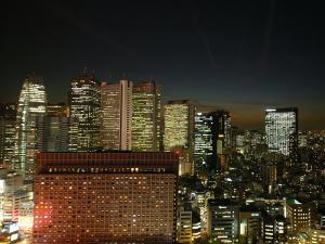 高層階からの夜景(西側)(一例)