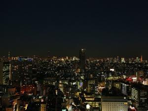 高層階からの夜景(東側)(一例)