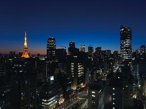 高層階からの東京タワービュー