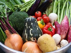 五島列島の食材(旨味の野菜
