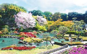 日本庭園(春)